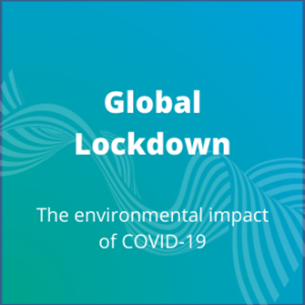 Global Lockdown - Environmental impact
